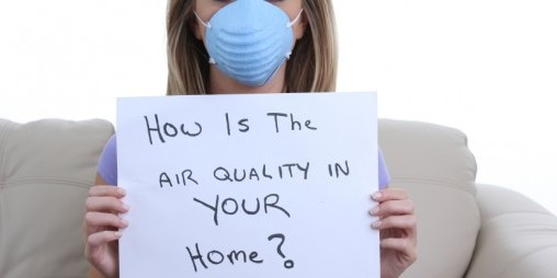 Air Quality Mold Test