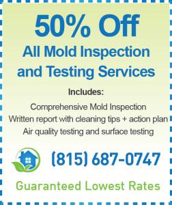 Crystal Lake Mold Inspection Coupon