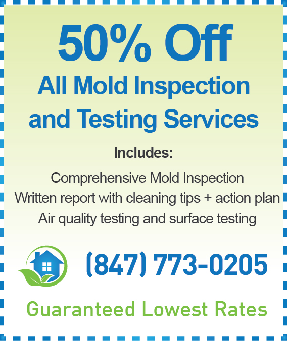 Mold Inspection Palatine Cost