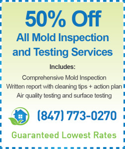 Waukegan Mold Inspection Cost