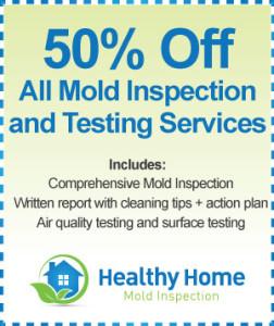 Kenosha WI Mold Inspection Cost