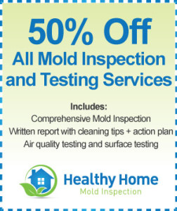 Mold Inspection Cost Rockford IL