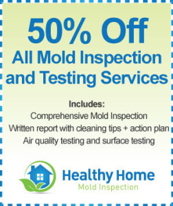 Mold Inspection Bloomingdale IL