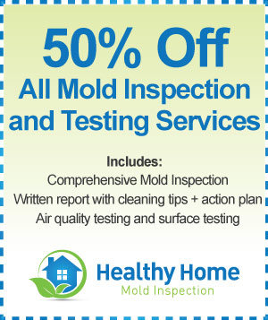 Mold Inspection Roselle IL