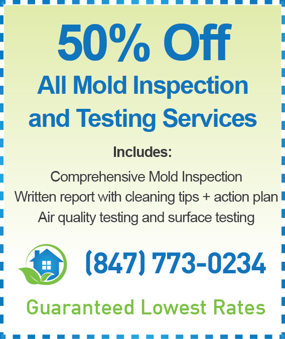 Elgin Mold Inspection Cost